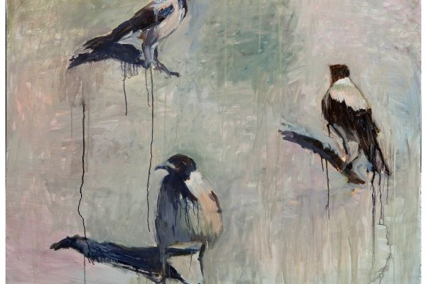 תערוכה חדשה: העורב באמנות הישראלית