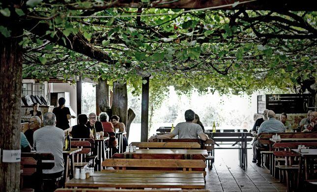 נכנס יין ויצאה ארוחה נהדרת| ביקורת מסעדות