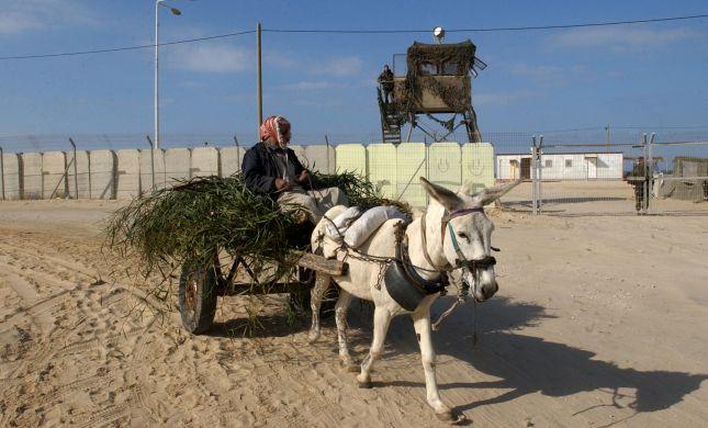 """מוטי יוגב: מספר הפלסטינים ביו""""ש אינו הגיוני"""