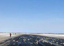 בגלל תקלה במטוס: 10 טון יהלומים וזהב נפלו מהשמים