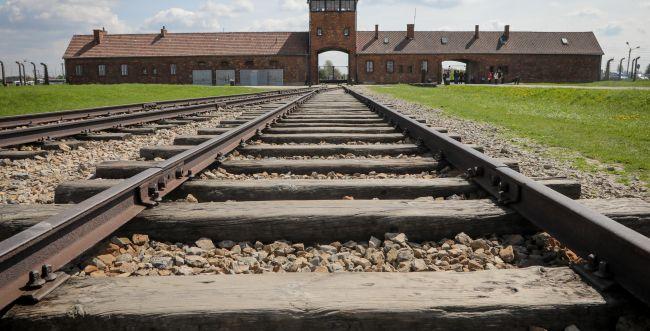 בזמן טקס לציון יום השואה: פעילי ימין קיצוני מחו בפולין