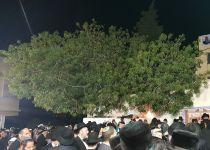 אחת הכניסות הגדולות לקבר יהושע בן נון
