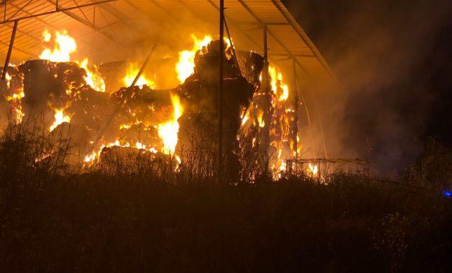 טרור חקלאי בצפון: 350 ערמות חציר הוצתו הלילה