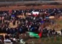 צפו: ההמלצה של חמאס לתושבי עוטף עזה