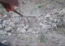 חרפה: ערבים בונים טרסות משרידי בית המקדש