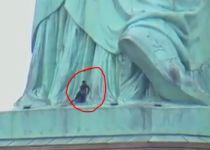 דרמה בניו יורק: אישה טיפסה על פסל החירות. צפו