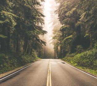 יהדות, פרשת שבוע הדרך או היעד; מה יותר חשוב לכם?