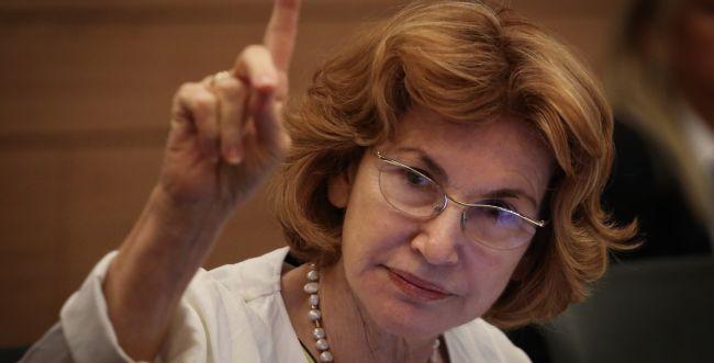 צפו: גרמן השוותה את חוק הלאום לשואה ועוררה סערה