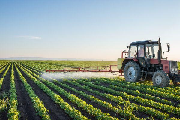 מה עניין שמיטה לעכשיו? חקלאי – בואו לחסוך מהיום