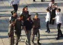 צפו: המשטרה עצרה פעיל שתקף מתפללים בכותל