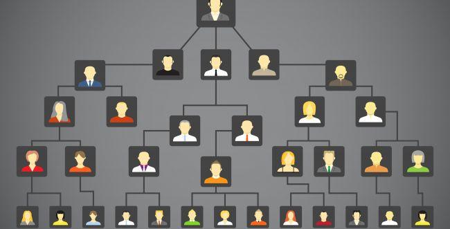 מיזם חדש: כך תמצאו מידע על היסטוריית המשפחה