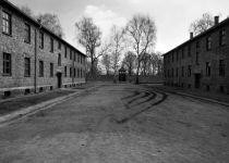 """ארה""""ב גירשה שומר ממחנות השמדה לגרמניה"""