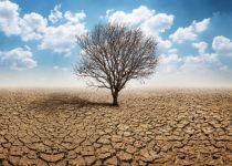 """הבצורת- מסר שהקב""""ה מנסה להעביר לנו"""