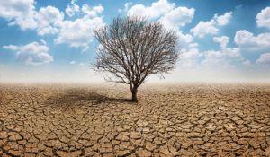 """ארץ ישראל יפה, טיולים הבצורת- מסר שהקב""""ה מנסה להעביר לנו"""