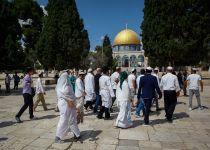 צפו: יהודים בקיטל עולים להר הבית ביום כיפור