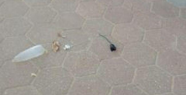 בלון תבערה נחת בבית ספר במועצה אזורית אשכול