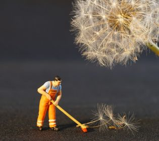 צרכנות, שווה לדעת שואב אבק אלחוטי או רובוטי? בעד ונגד