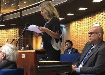 """מועצת אירופה: """"ישראל פוגעת בקטינים פלסטינים"""""""