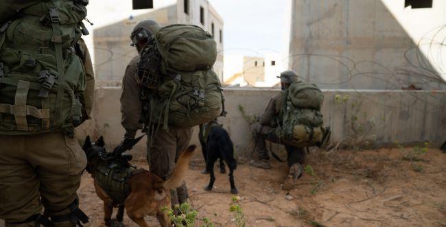 במהלך הלילה נעצרו 18 מבוקשים ביהודה ושומרון