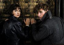 """יום הקולנוע חוזר: עשר המלצות לסרטים ב10 ש""""ח"""