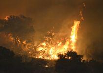 """חשש בארה""""ב: שריפות הענק יגיעו ללוס אנג'לס"""