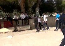 """חרף הוראת בג""""ץ: ערבים שוב שיחקו בכדור בהר הבית"""