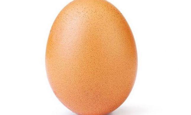 מטורף: זו הביצה שמשגעת את אינסטגרם