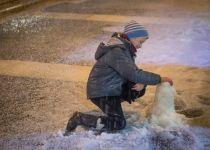 """בעקבות הסערה: שו""""ת מיוחד בנושא שלג"""