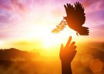 כל מה שרציתם לדעת על ימות המשיח