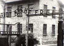 הסיסמה של מחנות הריכוז הומצאה לפני השואה? צפו