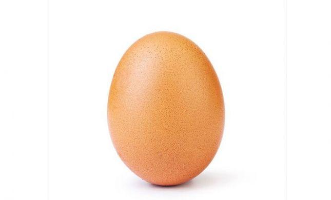 לאחר ששברה שיא עולמי: הביצה הפופולרית נחשפת