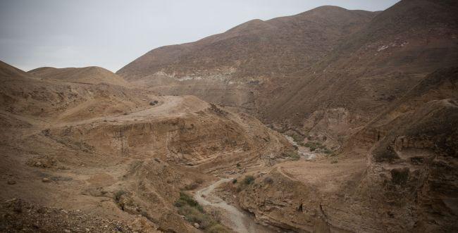 """עו""""ד על הפרשה: במדבר • האמנה החברתית"""