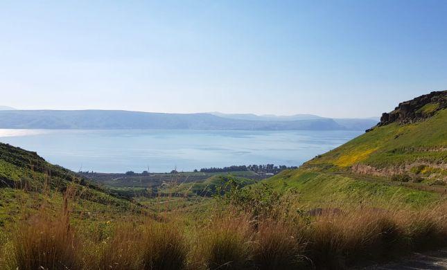 מדהים: בעקבות העלייה במפלס- האי שבכנרת נעלם