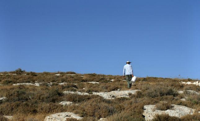 זעזוע בשומרון: צעירה דתיה חיה עם ערבי בגבעה