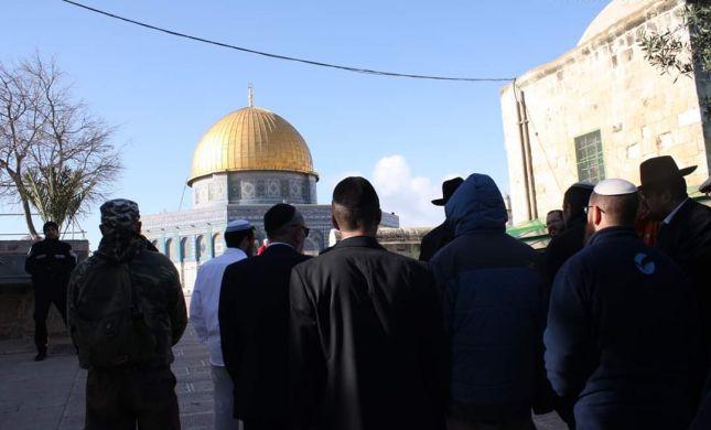 בכפוף להערכת מצב: תתכן כניסת יהודים להר הבית בט' באב
