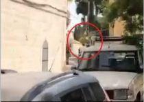 תיעוד: חייל חולץ מתקיפת חרדים קיצוניים בירושלים