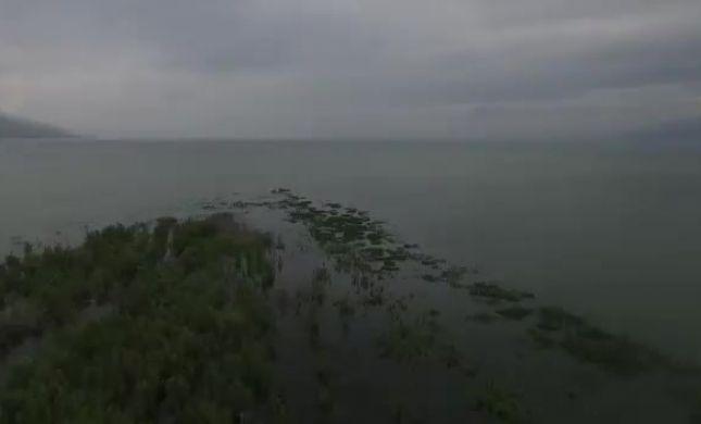 """צפו: תיעוד מרהיב של """"האי הנעלם"""" בכנרת"""