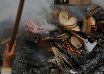 שבוע בלי לחם: עם ישראל ביער את החמץ. גלריה
