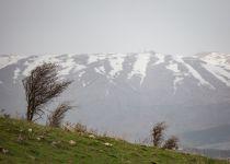 """צפו: שלג החל לרדת במג'דל שמס: תחזית לחוה""""מ"""