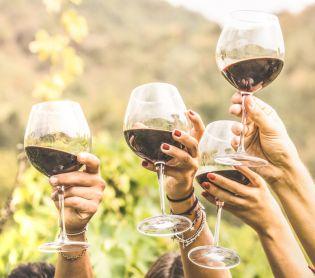 אוכל, חדשות האוכל ארבע על ארבע כוסות• המלצות ליינות | חלק ד'