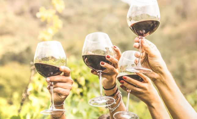 ארבע על ארבע כוסות• המלצות ליינות | חלק ד'