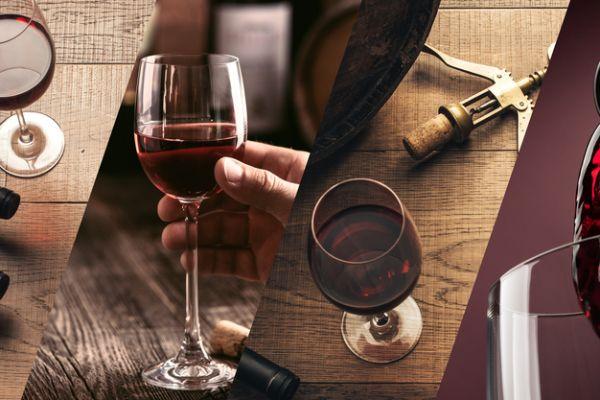 ארבע על ארבע כוסות• המלצות ליינות   חלק א'