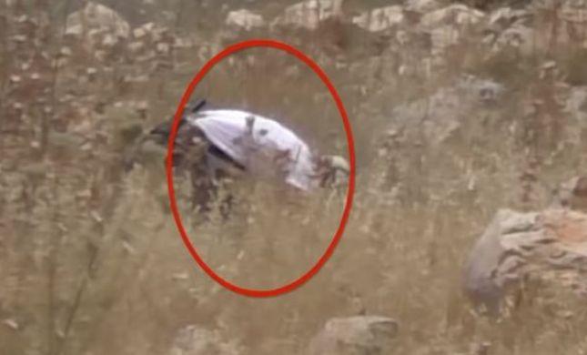 תיעוד: הפלסטינים מציתים, בצלם בהאשמה למתנחלים
