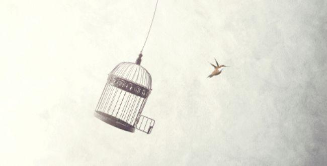 להיות חופשיים מתוך תחושת חירות ולא מגאווה