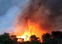 מדורה קשה: אלו השריפות המפורסמות בהיסטוריה