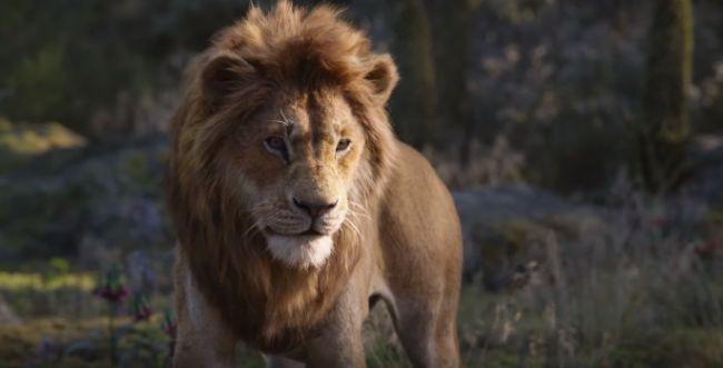 """צפו: הרגע הגדול ב""""מלך האריות"""" החדש נחשף"""