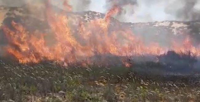 בלון תבערה נפל בפתח בית פרטי • 25 שריפות בעוטף