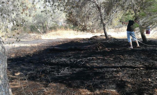 דרום שחור: 14 שריפות בעוטף- אחת בתוך יישוב