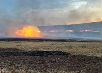 מדינה בלהבות: שריפה משתוללת מסביב לאיתמר