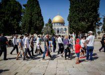 נכון לעכשיו: הר הבית יהיה פתוח ליהודים ביום ירושלים